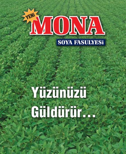 Biogold Tarim Soya